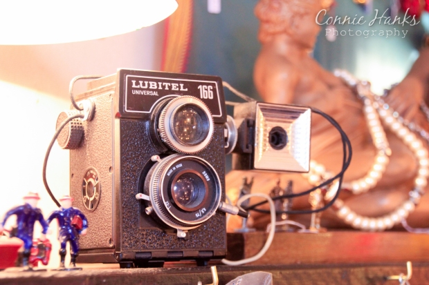 Connie Hanks Photography // ClickyChickCreates.com // Paris Flea Market - Lubitel 166 camera
