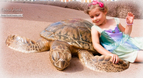 Connie Hanks Photography  //  ClickyChickCreates.com  //  Ariel relaxing with a sea turtle (taken at Sea World San Diego)