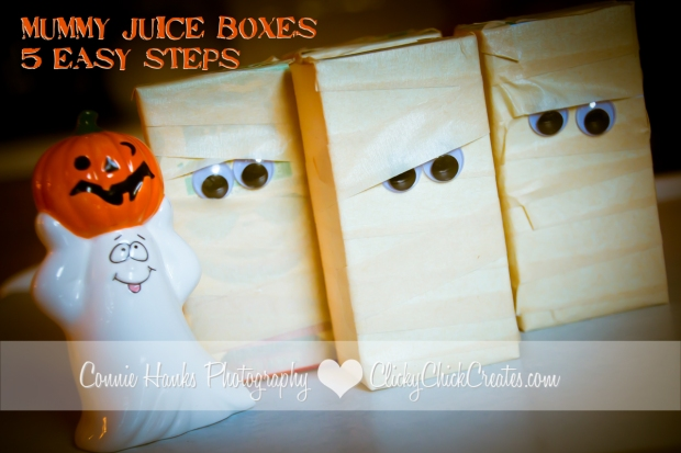 Connie Hanks Photography // ClickyChickCreates.com // Mummy Juice Boxes - perfect party drinks for pre-schoolers and young elementary aged kids