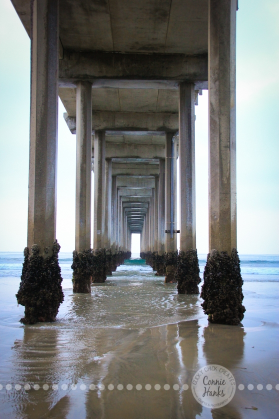 Connie Hanks Photography // ClickyChickCreates.com // Scripps Pier