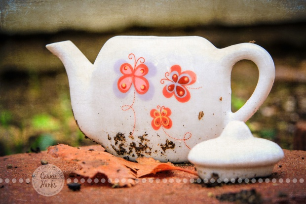 Connie Hanks Photography // ClickyChickCreates.com // abandoned tea pot