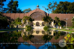 Connie Hanks Photography // ClickyChickCreates.com // Reflections from Balboa Park