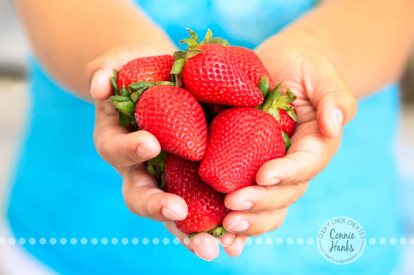 Connie Hanks Photography // ClickyChickCreates.com // Handful of Strawberries, inspired by Jeannie Thiessen