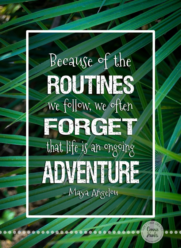 "Connie Hanks Photography // ClickyChickCreates.com // ""Because of the routines we follow, we often forget that life is an ongoing adventure"" Maya Angelou quote"