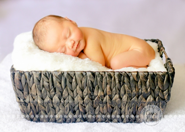 Connie Hanks Photography // ClickyChickCreates.com // sleeping baby in a basket, newborn photography, San Diego