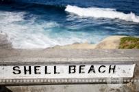 Connie Hanks Photography // ClickyChickCreates.com // La Jolla, beach, photography, San Diego, cove, morning, waves, crashing, shell