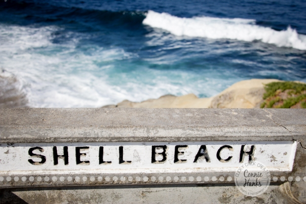Connie Hanks Photography // ClickyChickCreates.com // La Jolla, beach, photography, San Diego, cove, morning, waves, crashing, shell