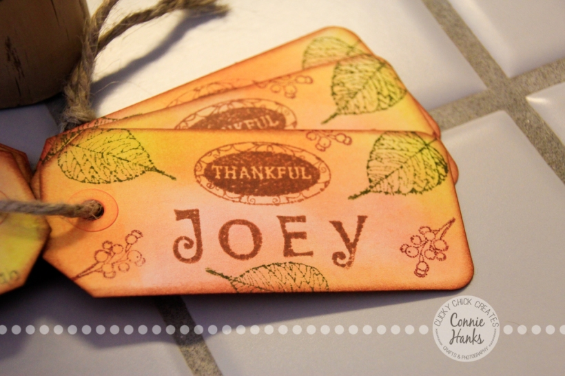 Connie Hanks Photography // ClickyChickCreates.com // Thanksgiving, place cards, thank you, hostess gift, gift tags, gratitude, Etsy, custom, handmade