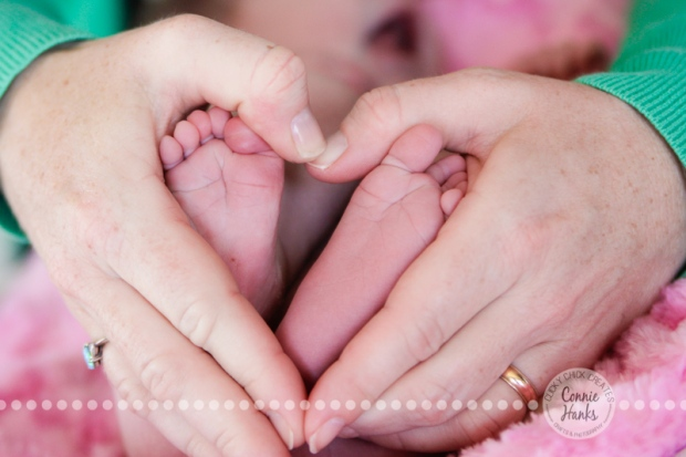 Connie Hanks Photography // ClickyChickCreates.com // baby girl newborn photo session - feet, hands, heart