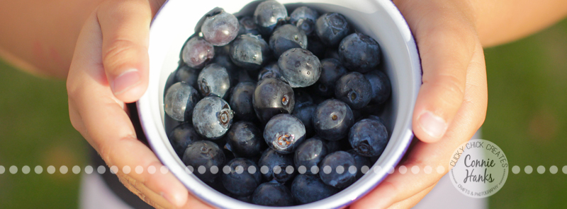 Connie Hanks Photography // ClickyChickCreates.com // bowl of blueberries