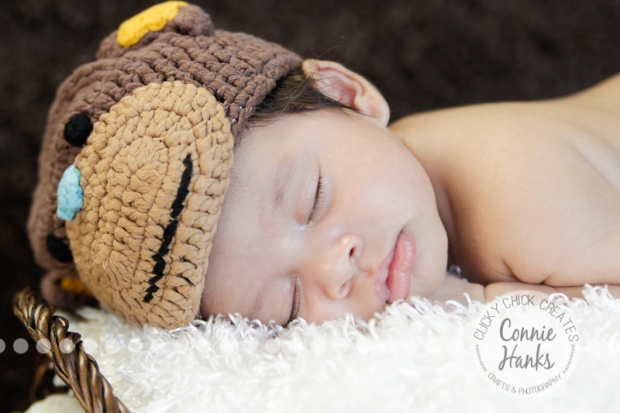 Connie hanks photography clickychickcreates com san diego newborn photography family