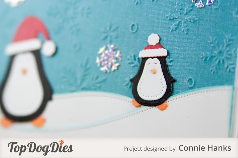 TDD_CH_Winter-Penguins_1864