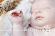 Connie Hanks Photography // ClickyChickCreates.com // newborn, San Diego newborn photography, family photo session, family photography, baby boy, siblings, brothers