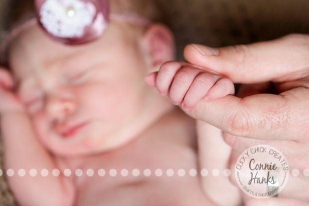 Connie Hanks Photography // ClickyChickCreates.com // newborn, baby photos, San Diego newborn photography, family photo session, family photography, baby girl, family
