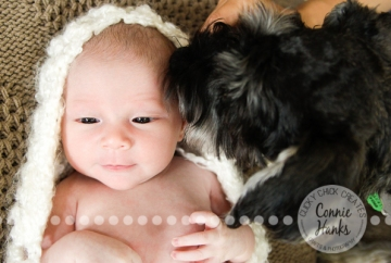 Connie Hanks Photography // ClickyChickCreates.com // newborn photography, baby photos, newborn girl, San Diego newborn photography, family photo session, family photography, baby girl, family